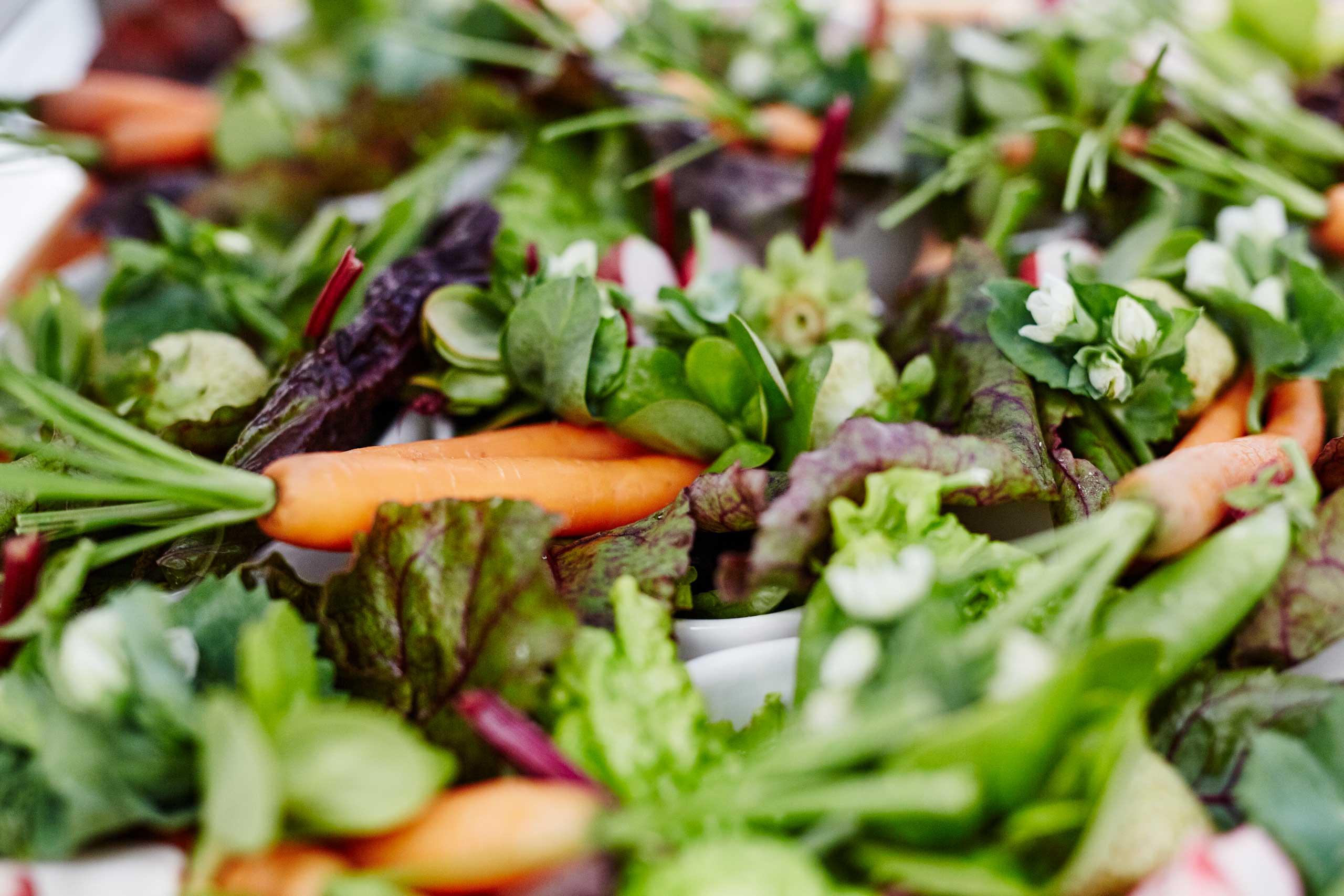 Økologisk mad og vin til konfirmation, fødselsdag og meget mere hos os eller som catering fra Puglisi Events.