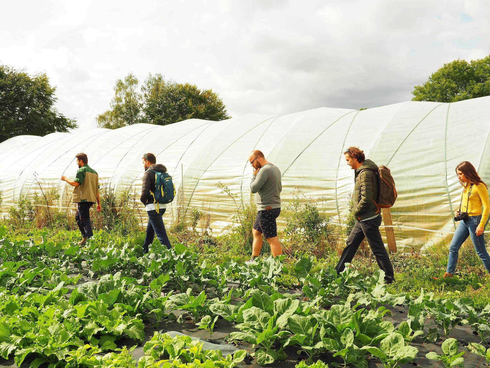 Tur til Farm of Ideas, økologisk landbrug og gastronomi, med Puglisi Events. Billede af: Alyssa Mittiga.